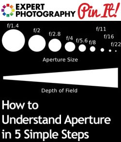 How to Understand Aperture in 5 Simple Steps1 How to Understand Aperture in 5 Simple Steps