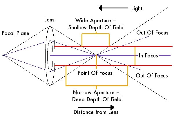 How to Understand Aperture in 5 Simple Steps