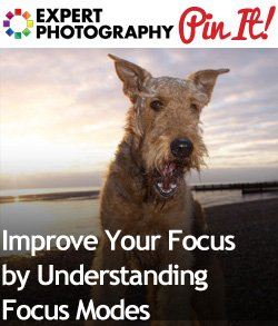 Improve Your Focus by Understanding Focus Modes Improve Your Focus by Understanding Focus Modes