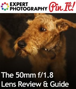 The 50mm f1 8 Lens Review and Guide The 50mm f/1.8 Lens Review & Guide