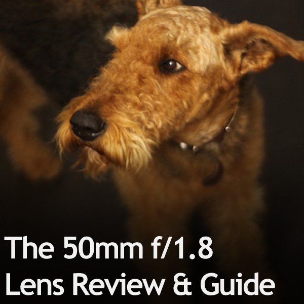 The 50mm f18 Lens Review & Guide
