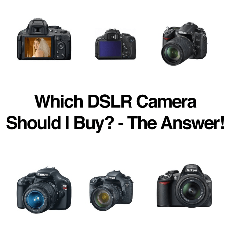 Which Which DSLR Camera Should I Buy?   The Answer!