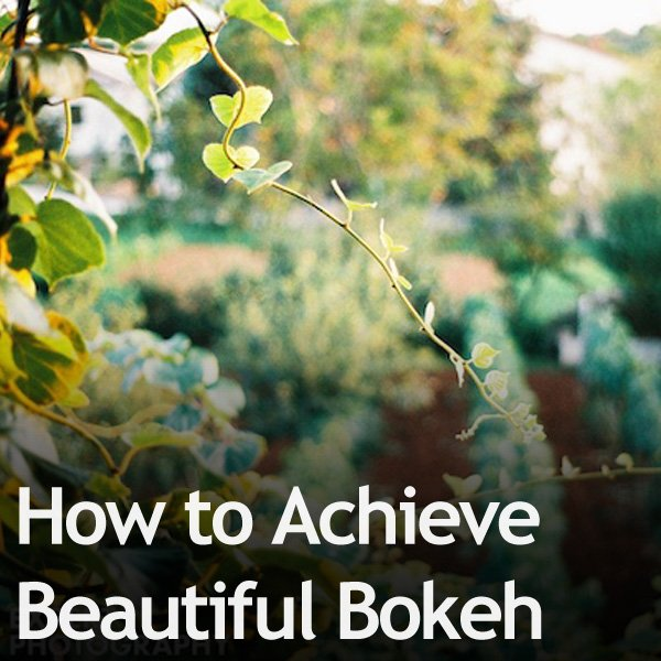 How to Achieve Beautiful Bokeh