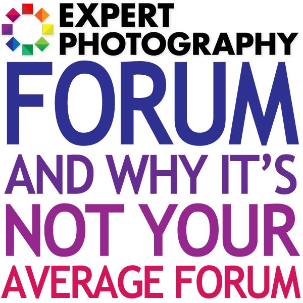 Expert Photography Forum And Why It's Not Your Average Forum