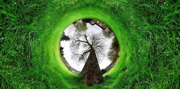 360 tunnel tree nature1 Trick Photography and Special Effects eBook Review
